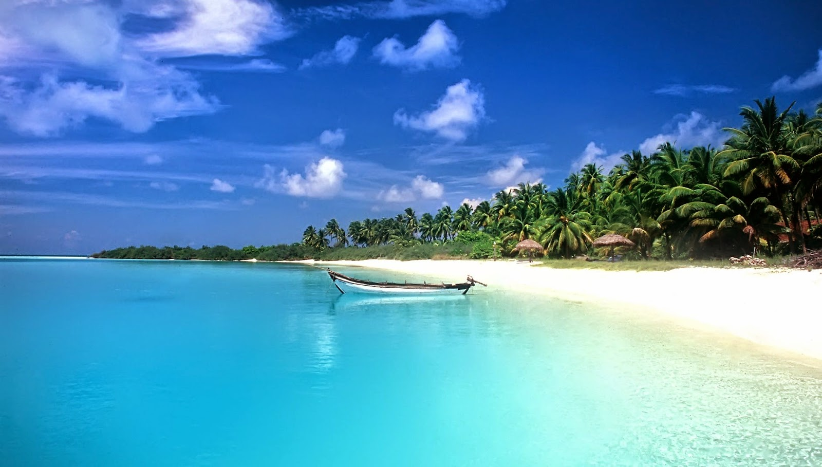 8771285-beautiful-beach-pictures