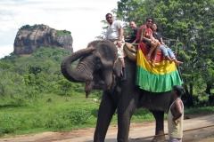 srilankaelephantride